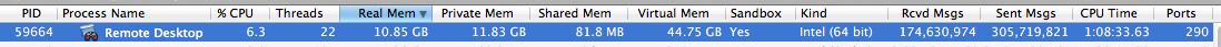 Remote Desktop Screen Usage